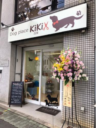 Dog PLACE KIKI